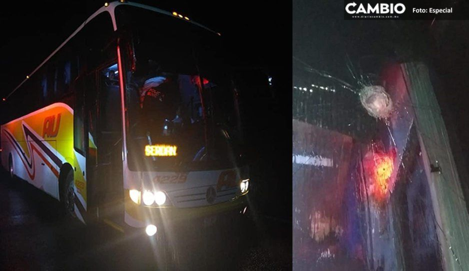 Lesionan a chófer de AU en intento de asalto en Felipe Ángeles