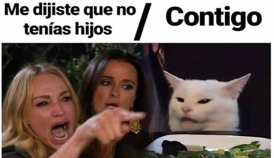 Esta es la historia detrás del meme viral de la mujer gritándole a un gato