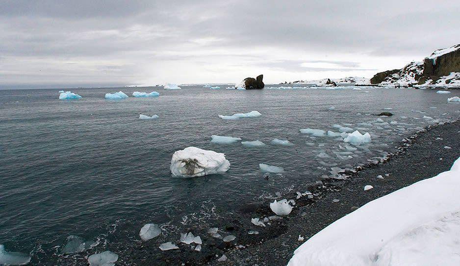 Nuevo record de temperatura en la Antártida: registra 18.3 grados