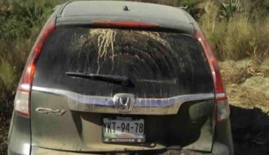 Recuperan cuatro vehículos robados y detienen a dos personas armadasen Ciudad Serdán