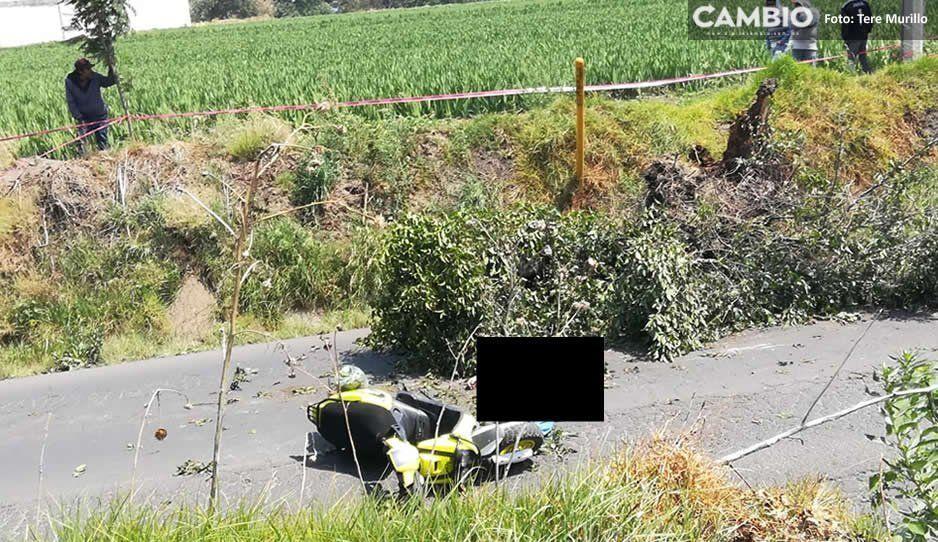 Mujer viajaba en motoneta sobre la carretera Texmelucan-El Verde y muere tras caerle un árbol