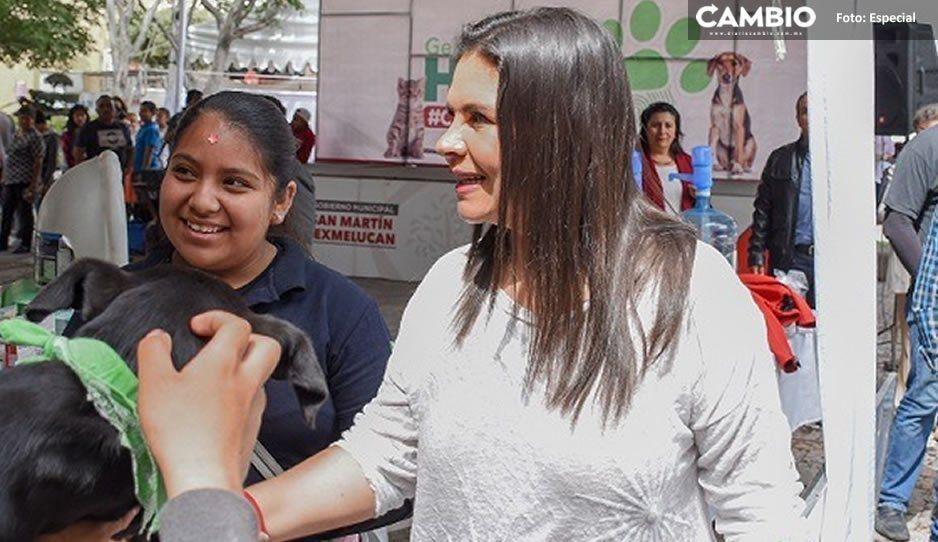 Norma Layón cumple compromiso por el bienestar animal en San Martín Texmelucan