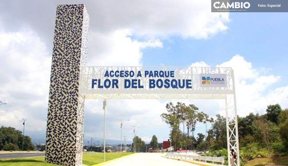Maurer busca echar para atrás predio en Flor del Bosque que aprobó anterior legislatura; el lunes presenta iniciativa