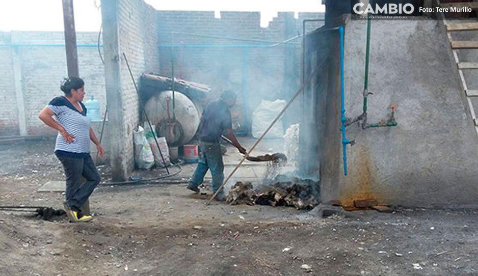 Pese a clausura de baños de vapor en Texmelucan por uso de productos prohibidos para calentar caldera, siguen operando