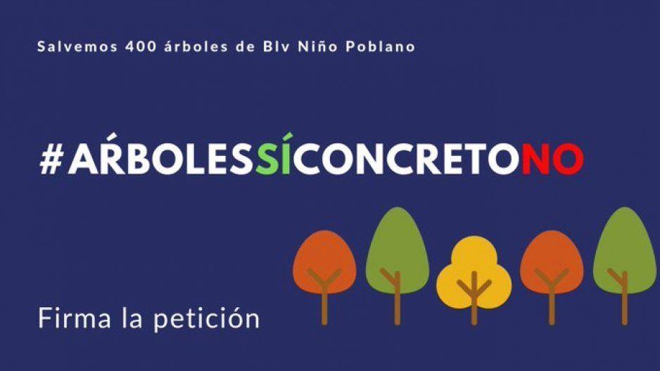 Lanzan campaña para salvar los arbolitos en el Blvd Del Niño Poblano ante intransigencia de Karina