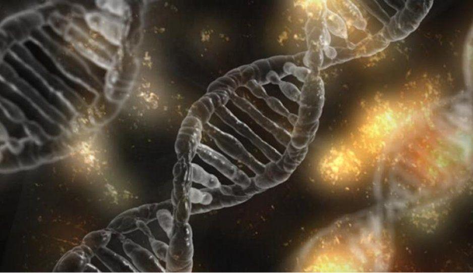 Descubren una molécula capaz de destruir células cancerígenas