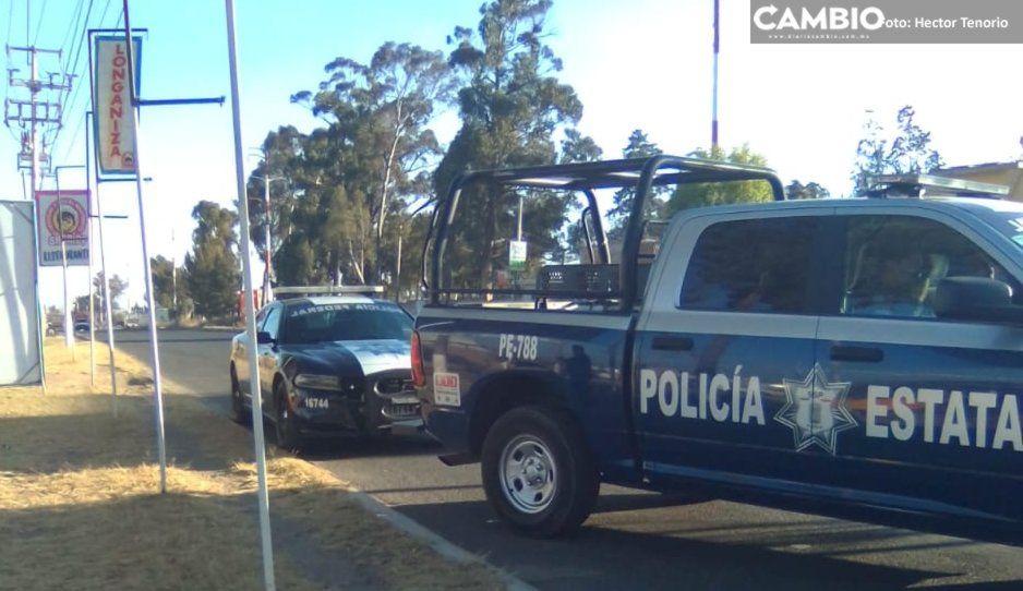 Sujetos armados asaltan comercio en la federal México-Puebla