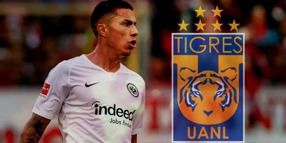 ¡Hay nuevo felino! Carlos Salcedo sería nuevo jugador de Tigres