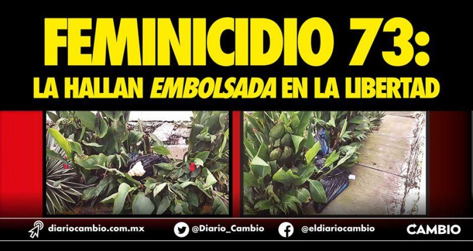 Feminicidio 74: hallan embolsada en la  jardinera de un predio en La Libertad
