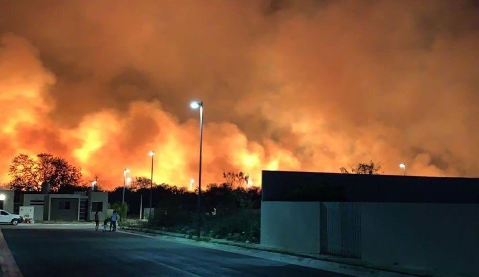 Incendio arrasa con 200 hectáreas de manglar en Campeche