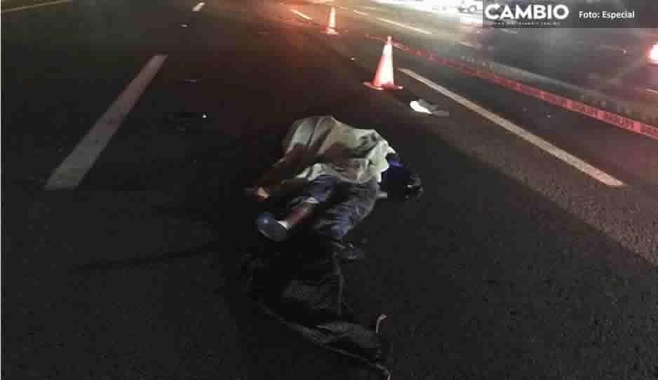 Motociclista muere al chocar contra un perro en la México-Puebla, altura de Texmelucan