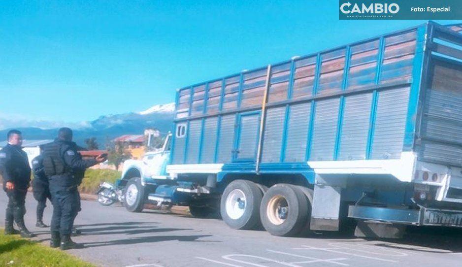 Roban tractocamión y policías sin permiso de portación de armas de fuego los detienen en Teotlalcingo