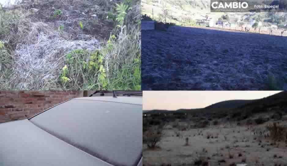 Protección Civil reporta heladas en Nauzontla, Xochiapulco, Chapulco, Yehualtepec y Libres