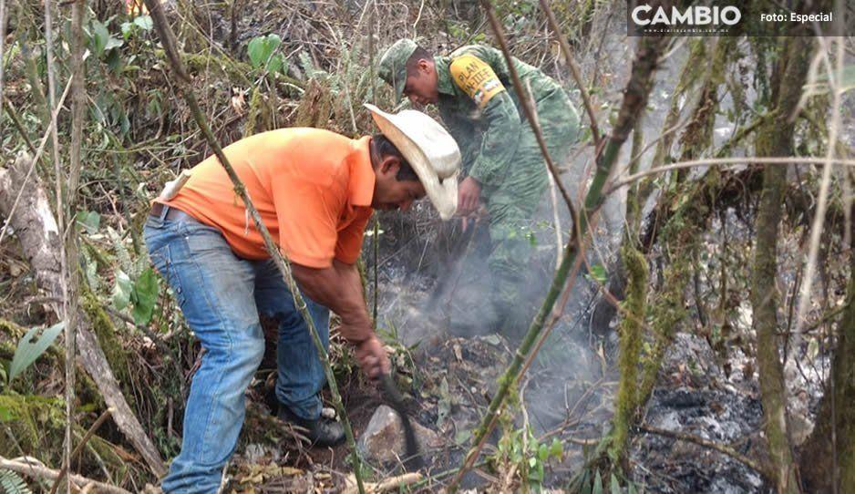Sofocan en un 65 por ciento incendio en Zoquitlán