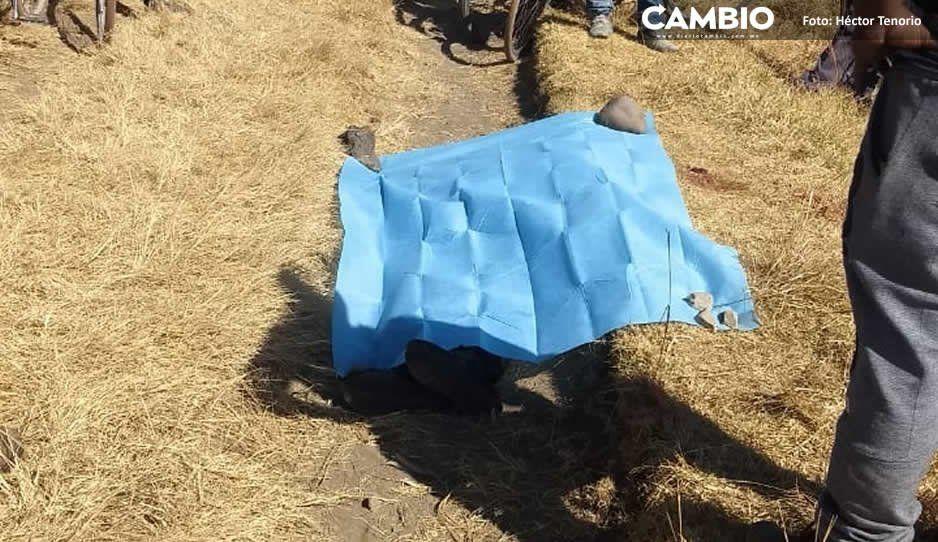 Entre balaceras y robos transcurren primeros 100 días de edil Norma Layón en Texmelucan