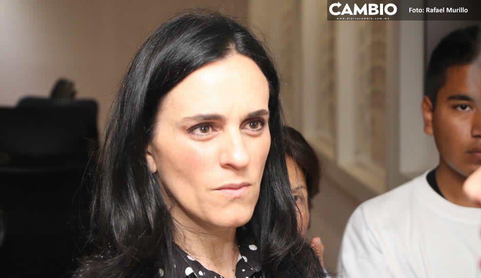 ¡Hay tiro! Della Vecchia vs Cárdenas: por qué quiso ser candidato del PAN si odia al partido