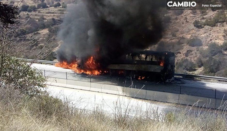 Nunca llegaron los bomberos: se incendia autobús en el Arco Norte y termina calcinado por falta de apoyo