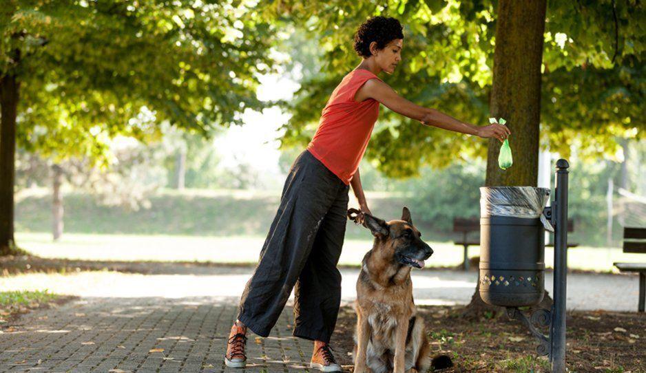 ¿Tienes perritos? Poblanos serán sancionados si no recogen las heces fecales de sus mascotas