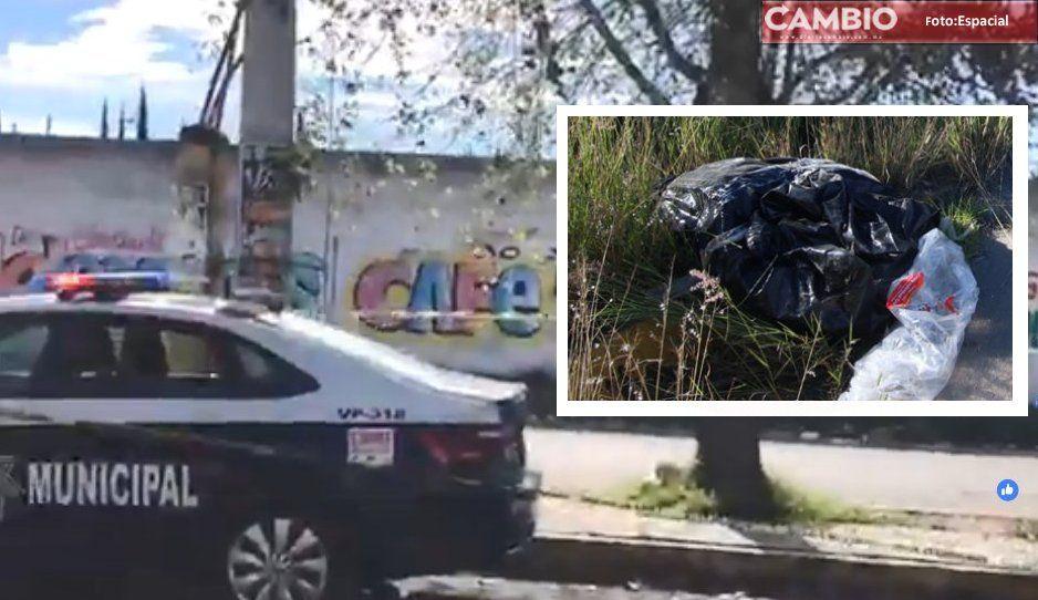Hallan cuerpo embolsado en contenedor de basura de Bosques de San Sebastián
