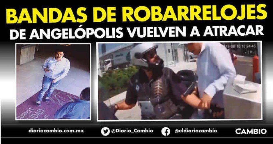 Bandas de robarelojes de Angelópolis vuelven a atracar (VIDEO)