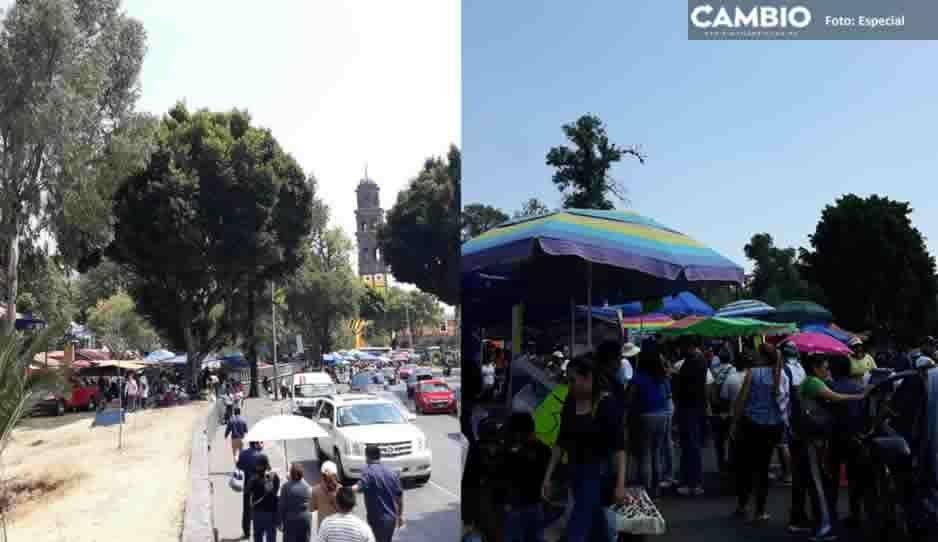 Gobernación Municipal superada por ambulantes, más de tres mil se establecieron en festejos de el Calvario