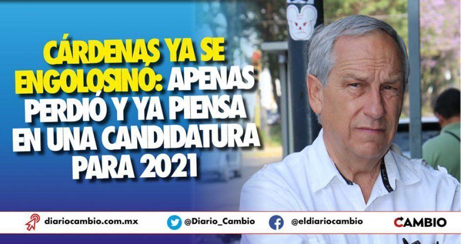 Cárdenas ya se engolosinó: apenas perdió y ya piensa en una candidatura para 2021