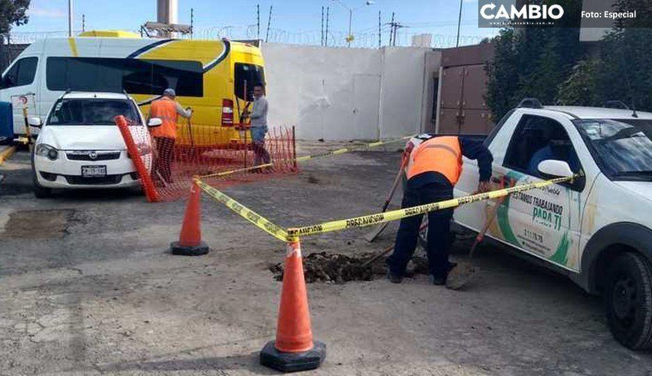 Iniciativa para acabar con terrorismo fecal de Agua de Puebla será votada este mes