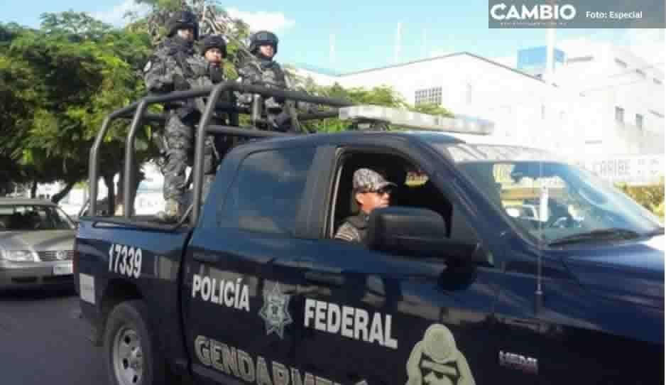 Gendarmería y Policía Federal realizan operativos en gaseras de Amozoc