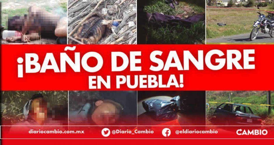Puebla, zona de guerra: ejecutan a 33 personas desde el viernes