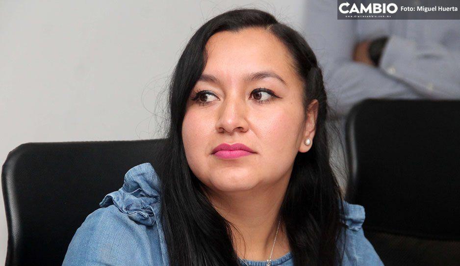 Morena prepara reforma a la ley para que titular de la CEDH permanezca 5 años en el cargo