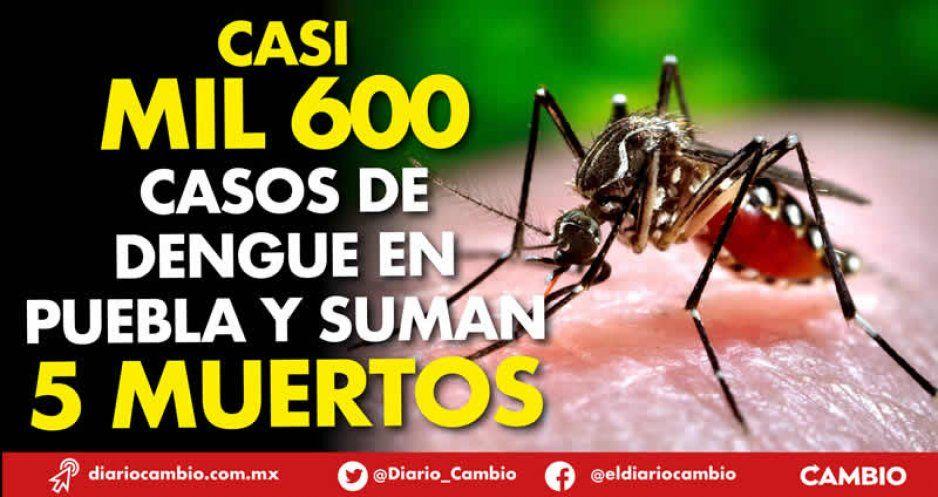 Casi mil 600 casos de dengue en Puebla y suman 5 muertos