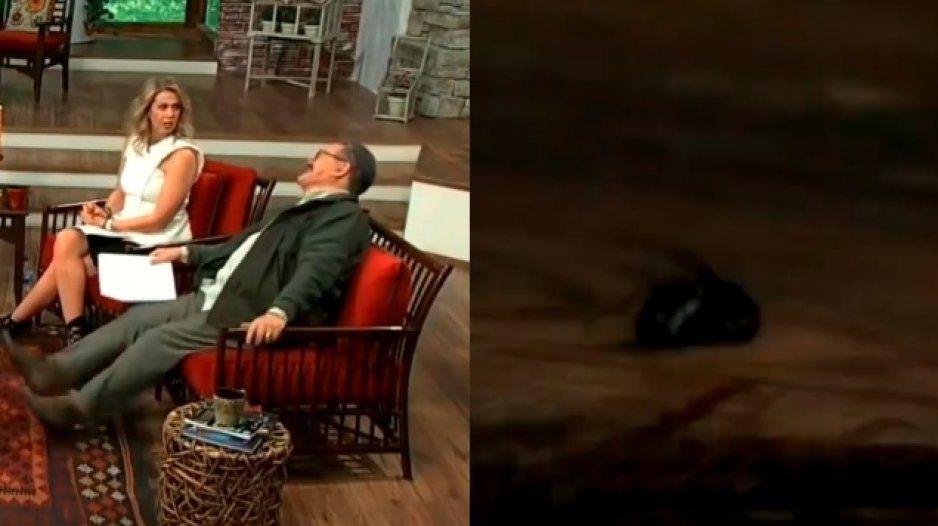 Internet recuerda cuando Pedrito Sola se comió una mosca (VIDEO)