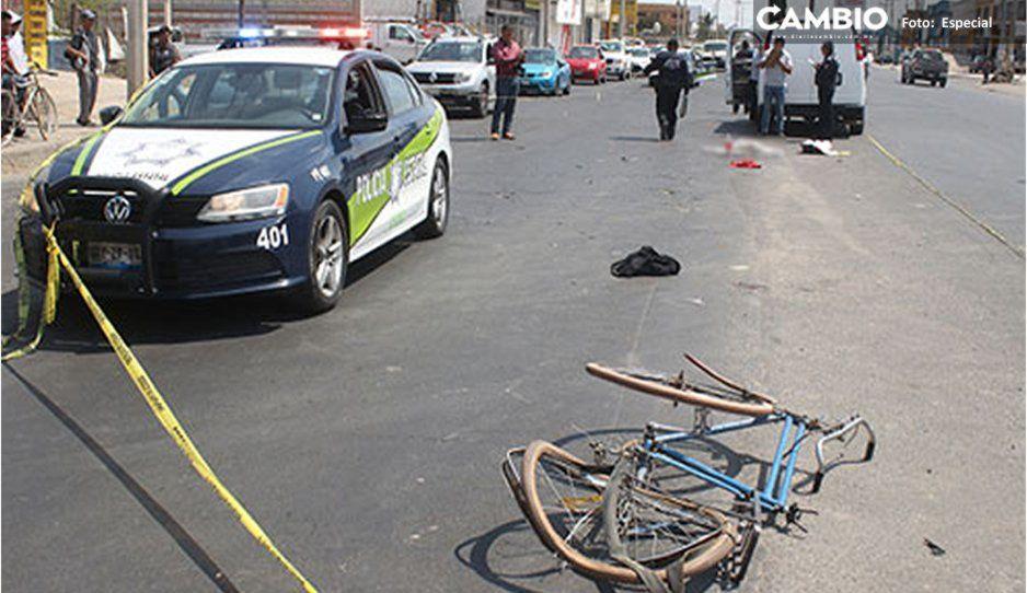 Abuela y niña de 6 años mueren tras ser atropelladas cuando paseaban en bici