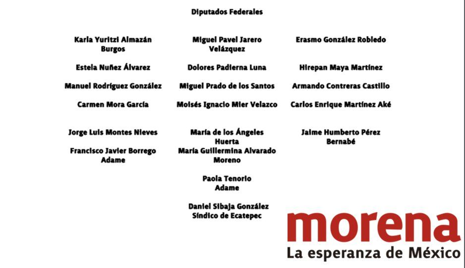 Diputados federales piden democracia y legalidad en Morena