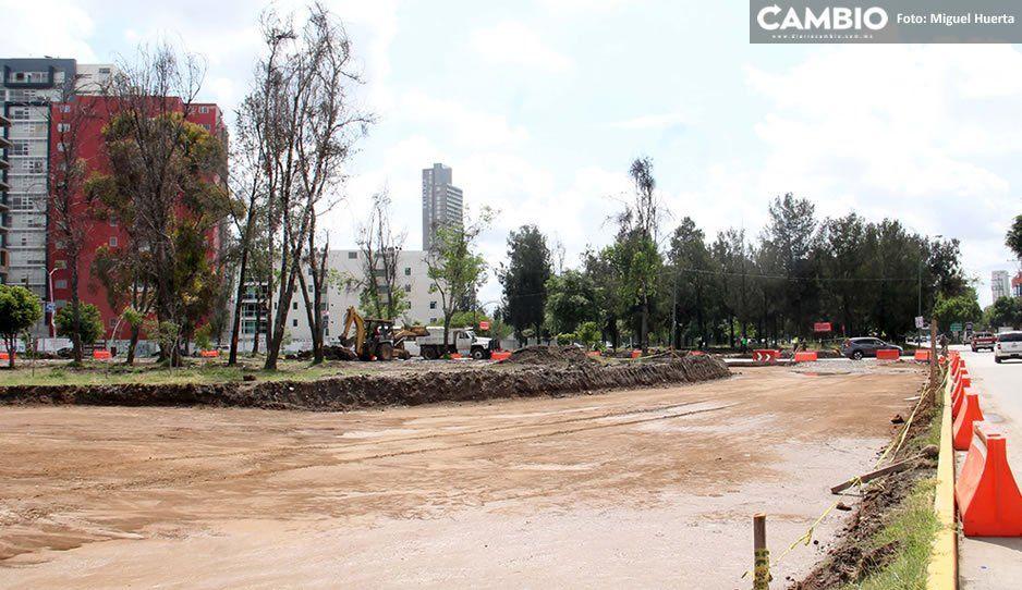 Arquitectoni K Inmobiliaria se encargará de reforestar intersección del Bulevar del Niño Poblano y Atlixco
