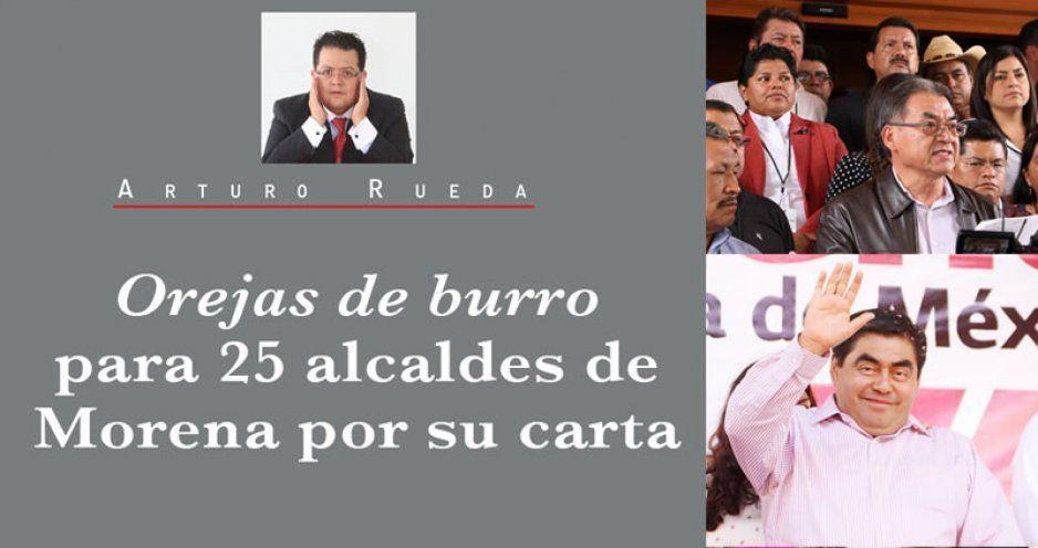 Orejas de burro para 25 alcaldes de Morena por su carta