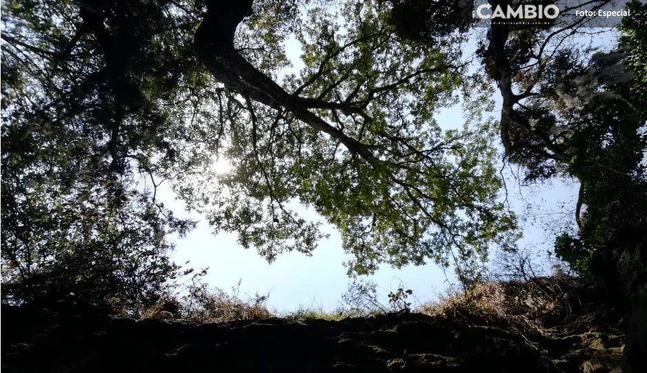 Encuentran hombre, reportado como desaparecido, al fondo de un barranco en Tlahuapan
