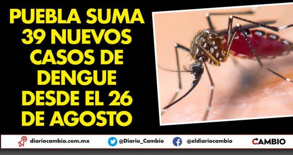 Puebla suma 39 nuevos casos de dengue desde el 26 de agosto