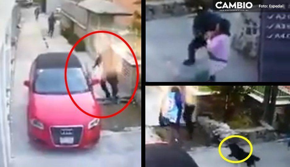 Sujetos con metralletas levantan a mujer en fraccionamiento; vecinos y hasta un perrito intentaron impedirlo (VIDEO)