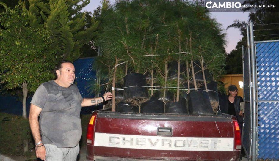 Festival Catrina solo entrega 200 de los 400 pinos que prometió… ¿Y los pajaritos muertos?