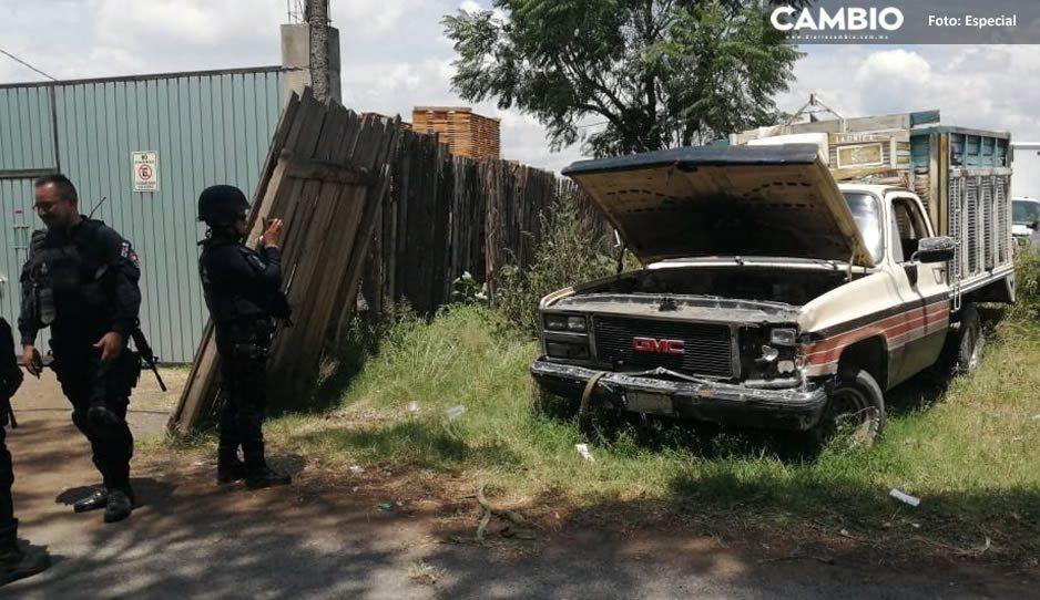 Catean predio y localizan unidades con reporte de robo en El Verde