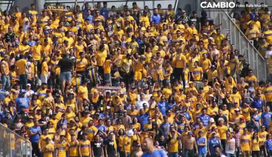 Invasión felina: los aficionados de Tigres pintaron de amarillo el Universitario
