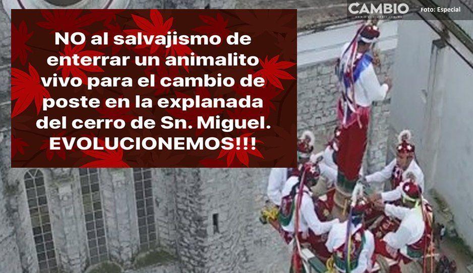 """Protectoras de animales piden no hacer ritual de los """"voladores de Cuetzalan"""""""