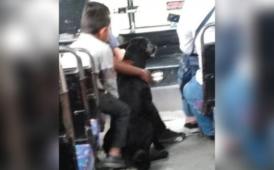 No todos los camioneros son malos en Puebla: Tres niños se suben al microbús con su perrito y chofer sólo les cobra 10 pesos