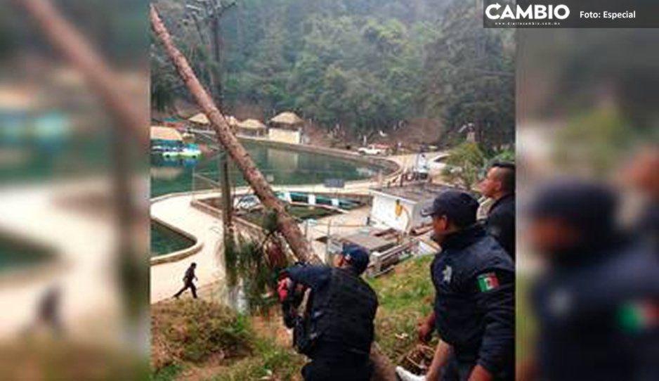 Desalojan a visitantes de balneario en Chignautla tras la caída de un árbol en cables de alta tensión