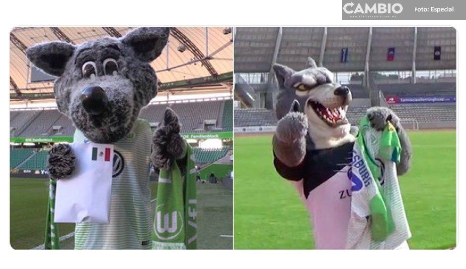 Wolfsburgo y Wolverhampton se despiden de su hermano menor ¡Adiós Lobos BUAP!