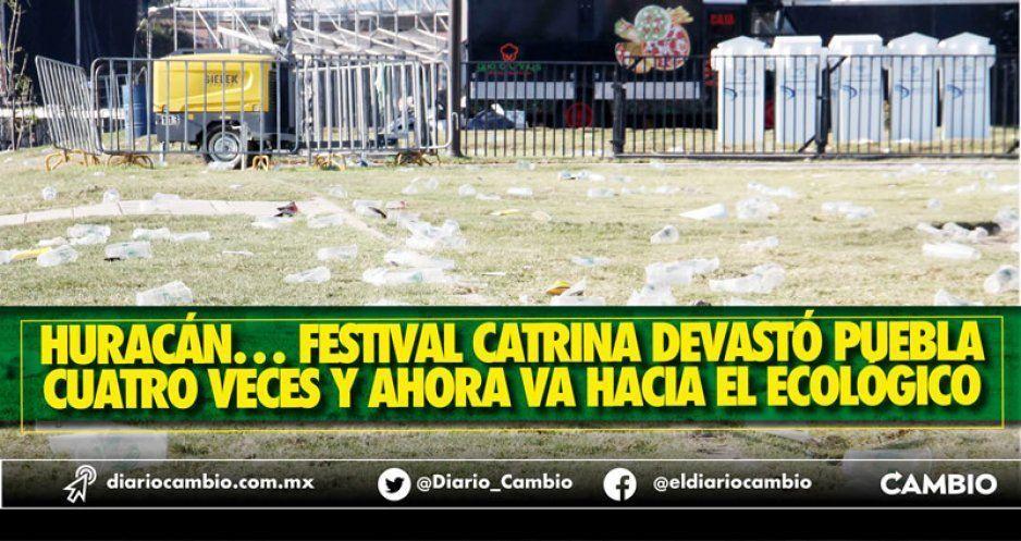 Festival Catrina es sinónimo de destrucción: sigue en pie en el Ecológico pese a ecocidio
