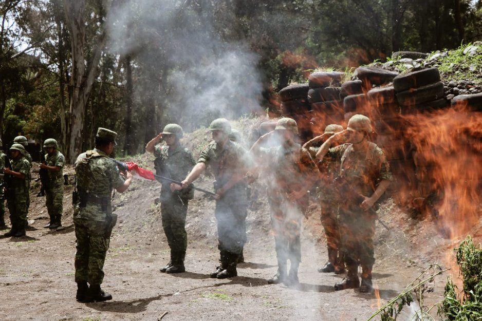 Ejército destruye en Atlixco matas de marihuana decomisadas por la policía municipal