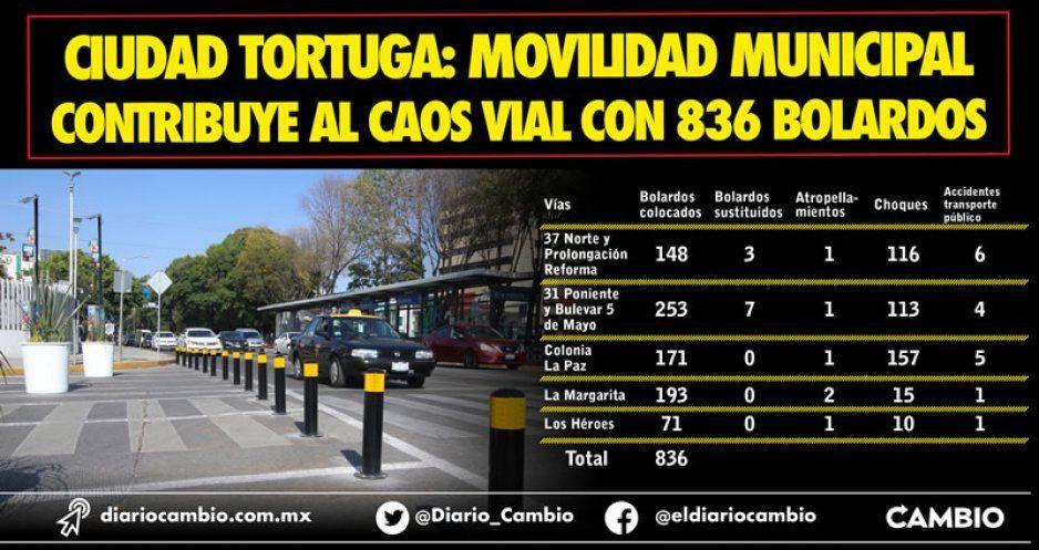 Ciudad tortuga: Movilidad municipal contribuye al caos vial con 836 bolardos