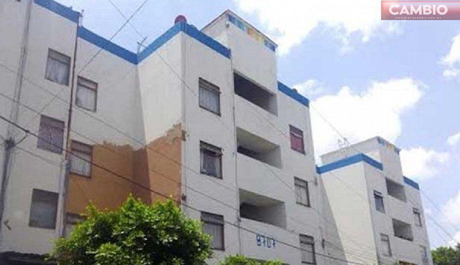 ¡Le llaman karma! Ratota cae del 4to piso en el Infonavit Mateo de Regil